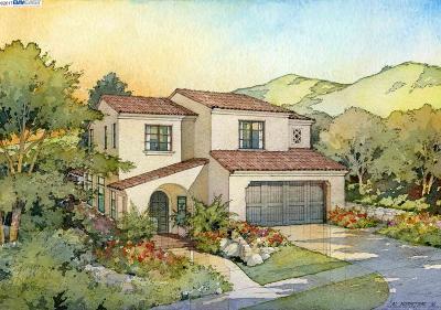 Fremont Single Family Home New: 42209 Vinya Way