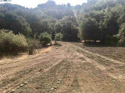 Orinda Residential Lots & Land For Sale: Oak Springs
