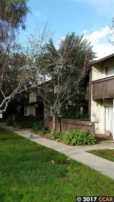 Alameda County, Contra Costa County Rental New: 1978 Pomar Way