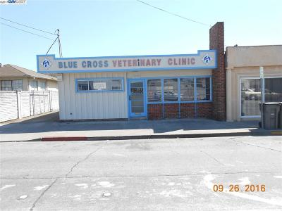 San Leandro Commercial For Sale: 1510 150th Avenue