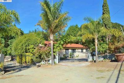 Castro Valley Single Family Home For Sale: 9150 Crow Canyon Rd
