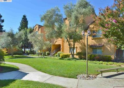 San Ramon Condo/Townhouse For Sale: 735 Watson Canyon Ct. #119