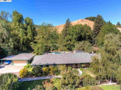 Castro Valley Single Family Home For Sale: 9556 Crow Canyon Rd