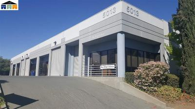 Concord Commercial For Sale: 5013 Forni Dr