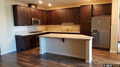 San Ramon Rental For Rent: 4720 Norris Canyon Rd Umit 205 #205