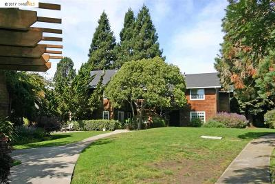 Oakland Condo/Townhouse For Sale: 624 Alcatraz Ave #D