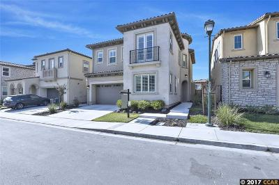 San Ramon Single Family Home For Sale: 6057 Alpine Blue Dr