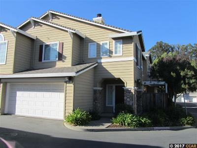 San Ramon Condo/Townhouse New: 904 Radiant Lane