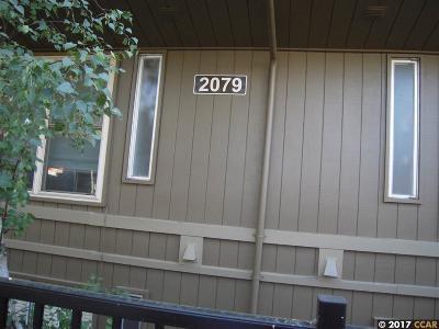 Moraga Condo/Townhouse New: 2079 Ascot Drive #239