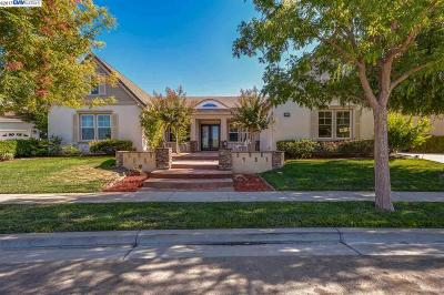 Pleasanton Single Family Home New: 7228 Moss Tree Way