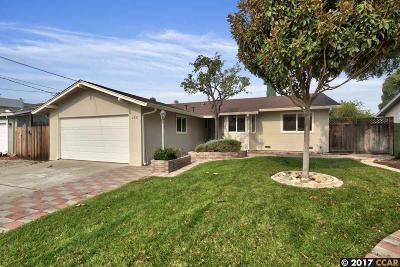 Concord Single Family Home New: 2687 Montgomery Avenue