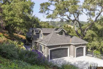 Orinda Single Family Home For Sale: 49 Diablo View Dr