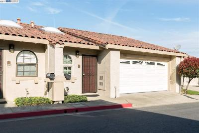 Hayward Hills Condo/Townhouse New: 3231 Guillermo Place