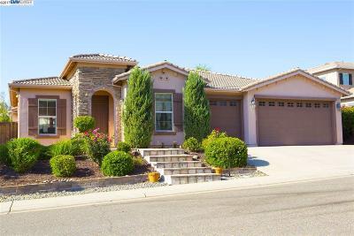 Single Family Home New: 1005 Bearsden Ct