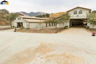 Walnut Creek Residential Lots & Land For Sale: 000-00 Castle Rock