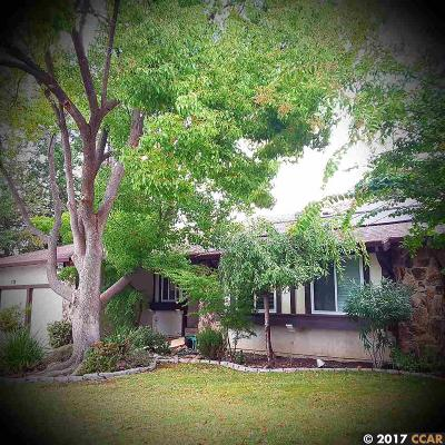 Walnut Creek Single Family Home For Sale: 4542 Walnut Blvd