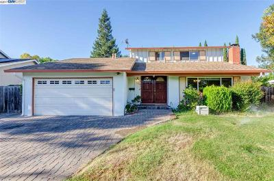 Concord Single Family Home For Sale: 937 Brink Ct