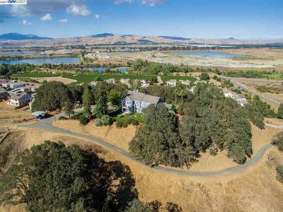 Pleasanton Residential Lots & Land For Sale: 1 Brozosky Hill Ln