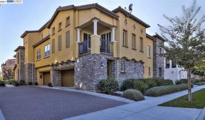 Livermore Condo/Townhouse For Sale: 663 Selby Ln #4