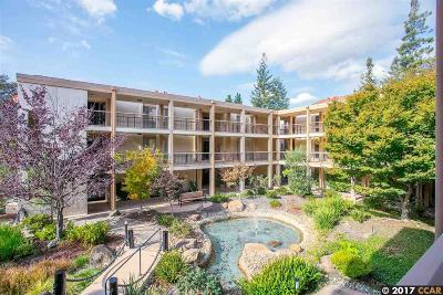 Walnut Creek Condo/Townhouse For Sale: 4033 Terra Granada Dr #2B