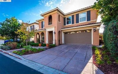 Hayward Single Family Home For Sale: 93 Carrick Cir