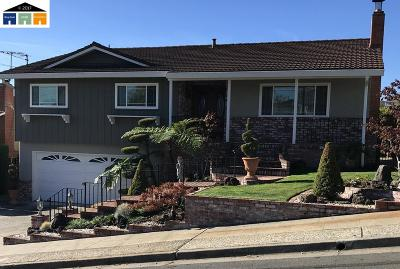 Castro Valley Single Family Home For Sale: 2855 Jennifer Drive