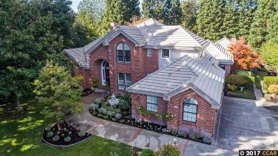 Alamo Single Family Home For Sale: 3102 Sandstone Rd