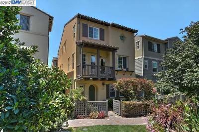 Fremont Single Family Home For Sale: 2446 Monet Ter