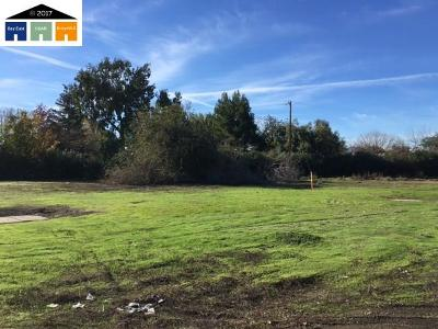 Brentwood Residential Lots & Land For Sale: Lone Tree Way