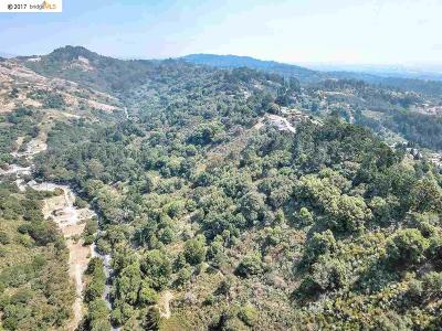 Orinda Residential Lots & Land For Sale: 1001 Fish Ranch Rd
