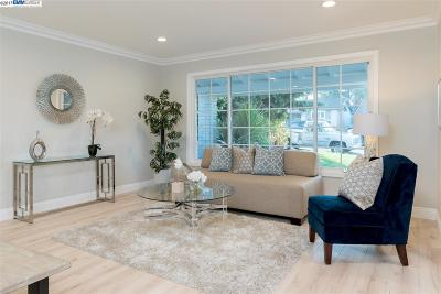 Castro Valley Single Family Home For Sale: 5214 Reedley Way