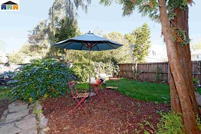 Berkeley Single Family Home For Sale: 1011 Bancroft Way