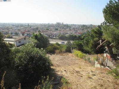 San Lorenzo Residential Lots & Land For Sale: 14777 Saturn Dr