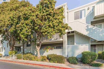 Fremont Condo/Townhouse New: 37248 Meadowbrook Cmn #303