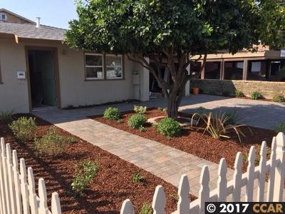 Castro Valley Multi Family Home For Sale: 20175 San Miguel Ave