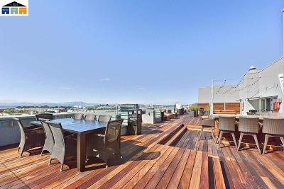 Oakland Condo/Townhouse New: 6465 San Pablo Avenue #702