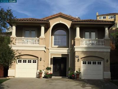 San Ramon Single Family Home For Sale: 569 Kingsbridge Ct