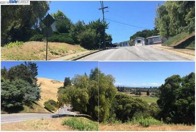 Hayward Residential Lots & Land For Sale: 32045 Bernice Way
