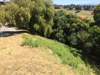 Hayward Residential Lots & Land For Sale: 32153 Bernice Way
