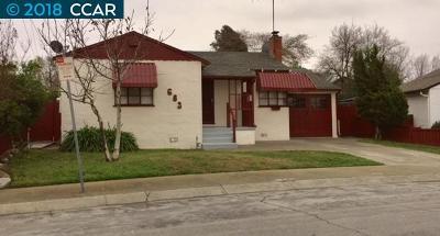 Hayward Single Family Home New: 683 Paradise Blvd