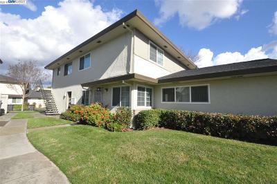 Union City Condo/Townhouse New: 34764 Skylark Dr #2