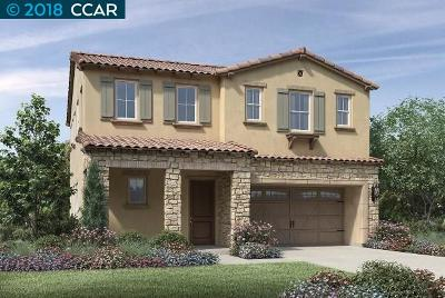 Dublin, Pleasanton, Alamo, Danville, Orinda, San Ramon Single Family Home For Sale: 2780 Mount Dana Drive
