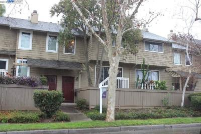 Pleasanton Condo/Townhouse For Sale: 728 Palomino Dr