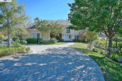 Pleasanton Single Family Home For Sale: 1569 Via Di Salerno