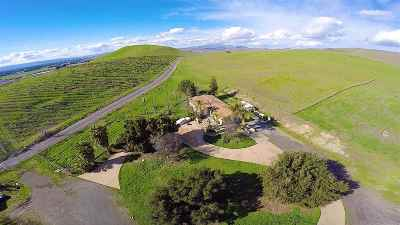 Livermore Single Family Home Price Change: 9782 Flynn Road South