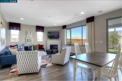 Pittsburg Single Family Home For Sale: 3236 La Paz Drive
