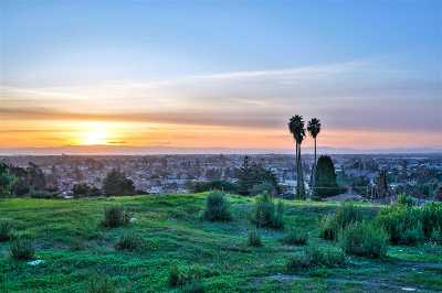 Hayward Residential Lots & Land For Sale: 1186 Overlook Ave