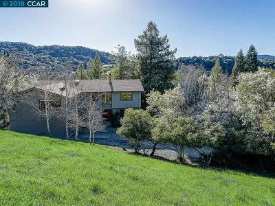 Moraga Single Family Home For Sale: 1355 Camino Pablo