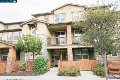 Walnut Creek Condo/Townhouse For Sale: 221 El Paseo Circle