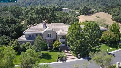 Pleasanton CA Single Family Home For Sale: $3,650,000